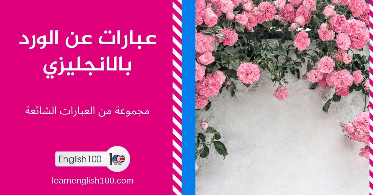 عبارات عن الورد بالانجليزي