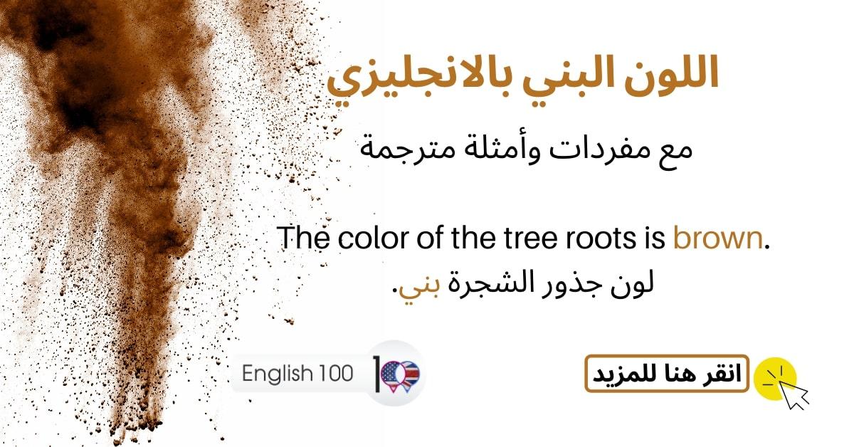 اللون البني بالانجليزي مع أمثلة Brown color in English with examples