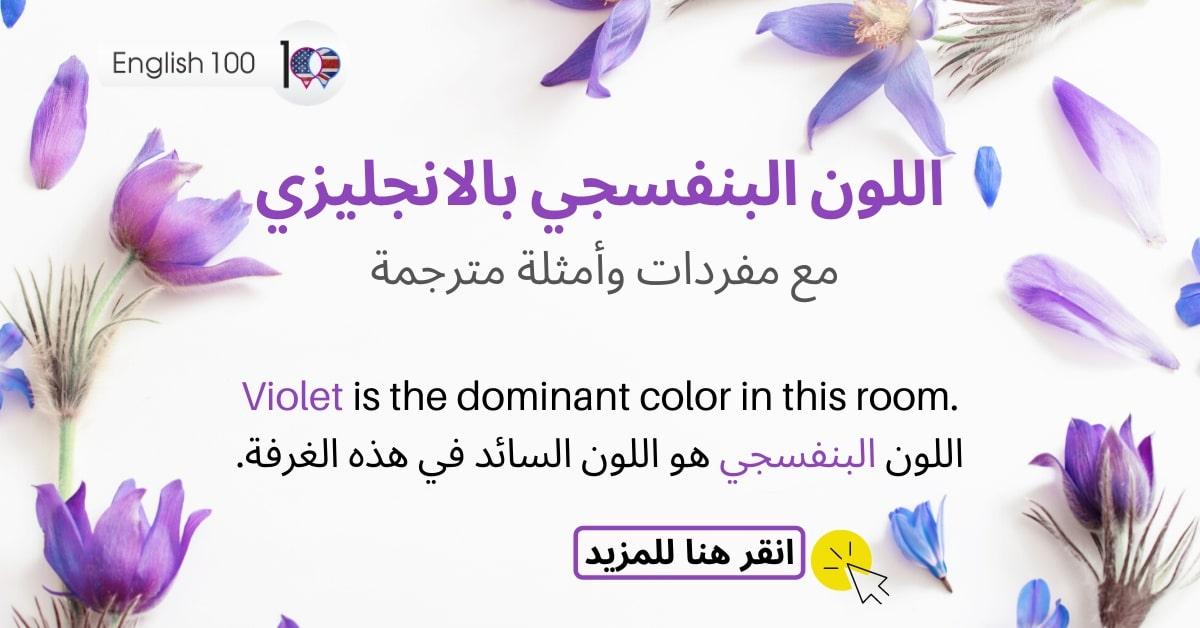 اللون البنفسجي بالانجليزي The violet color in English with sentencesمع أمثلة