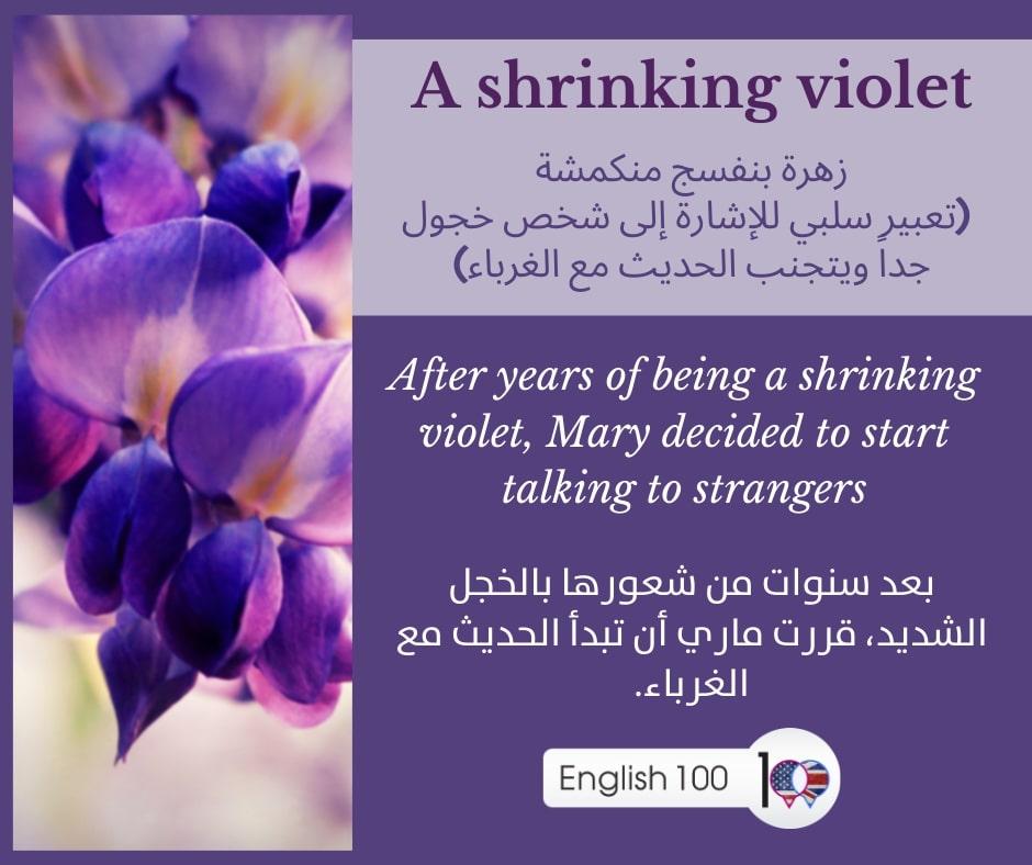 اللون البنفسجي بالانجليزي The violet color in English