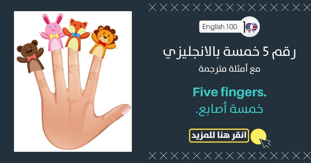 رقم 5 خمسة بالانجليزي مع أمثلة Number Five in English with examples