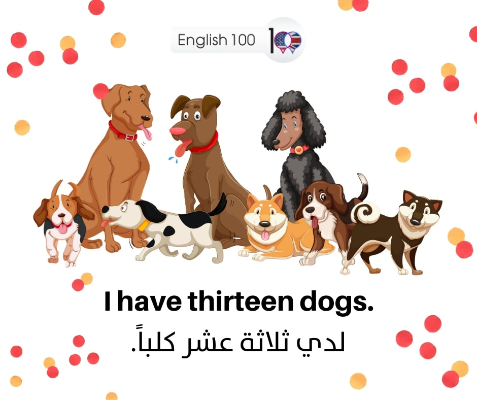 رقم 13 بالانجليزي Number Thirteen in English