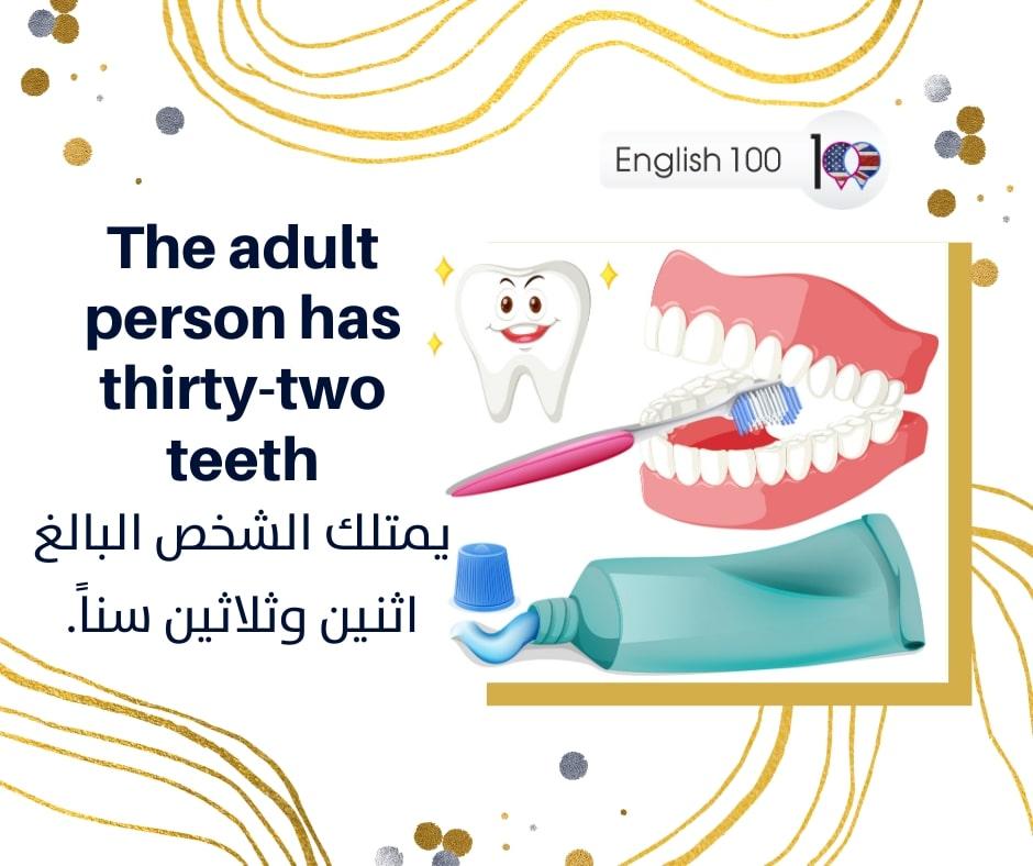 رقم 30 ثلاثين بالانجليزي Number Thirty in English