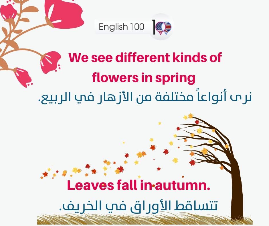 فصول السنة بالانجليزي Seasons of the year in English