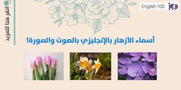اسماء الازهار بالانجليزي Names of the flowers in English