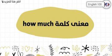 معنى كلمة how much مع أمثلة The Meaning of How Much with examples