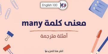 معنى كلمة many مع أمثلة The meaning of many with examples