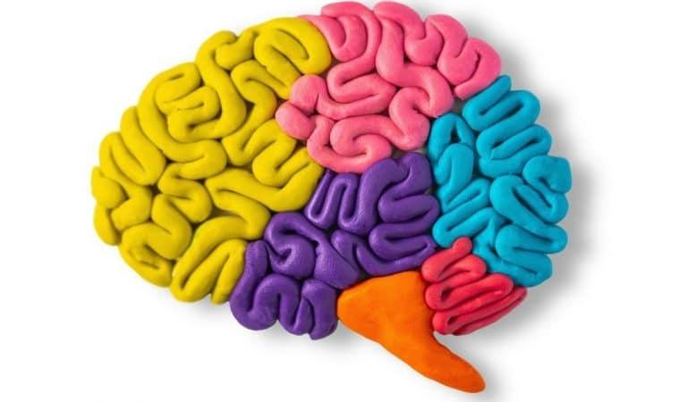 Left vs Right: Brain Games for Brain Training app – review